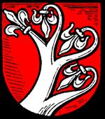 SG Söhrewald