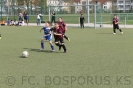 G Junio.2012 Bospor-Vollmarsh